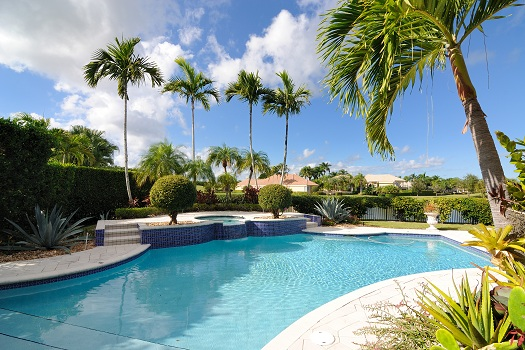 Tips for Protecting Your Pool against Damage Caused by Tree Roots