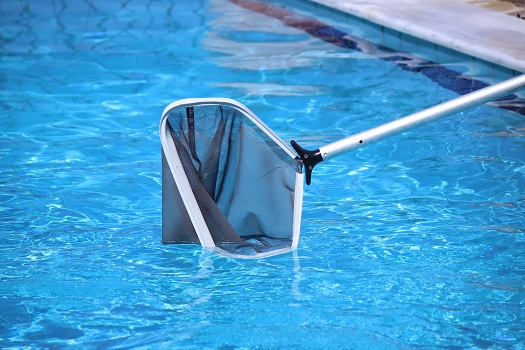 Tips for Keeping Your Pool Free of Leaves